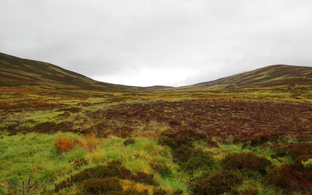 Шотландия фото Лолиты Быстровой